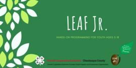 LEAF Jr. Header