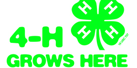 4-H grows here logo