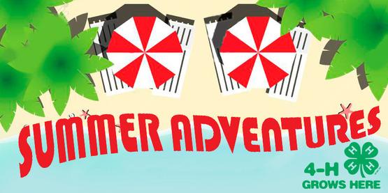 summer 4-H programs