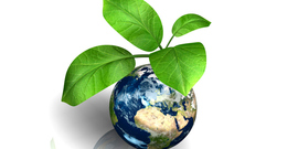 An image of earth with a plant sticking out of it