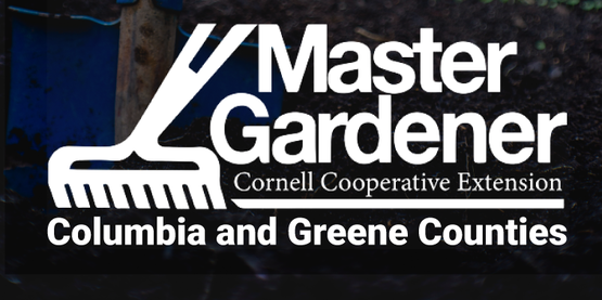 DIgging In with Master Gardeners Radio Show logo