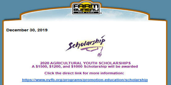 Farm Bureau Scholarship Announcement 2020