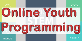 Online Youth Programming with head, heart, hands & health & STEM Logos