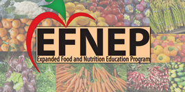 EFNEP Logo with Various Fruits & Vegetables Surrounding it.