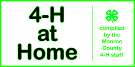 4-H at Home banner