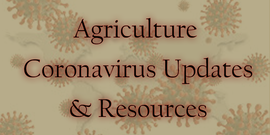 Agriculture Coronavirus Updates & Resources with Coronavirus image behind.