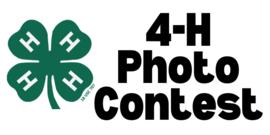 4-H Photo Contest