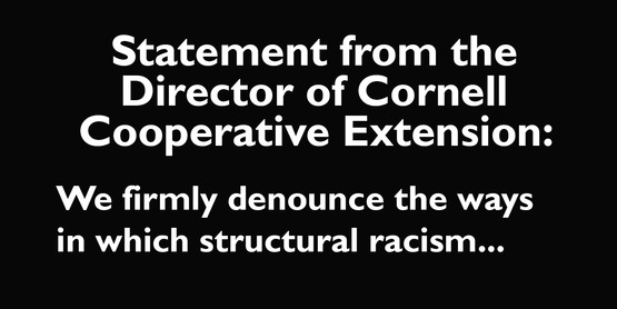 A statement from the Director of CCE: We firmly denounce racism...