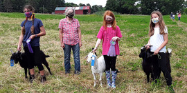 Contestants and their ribbons and goats at Laughing Goat Farm after judging in the 2020 Tompkins County Youth Fair.