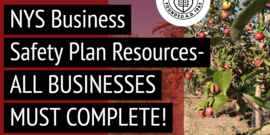 All farms are required to have a NY Forward Business Safety Plan.