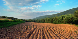 tilled farm field at dusk.