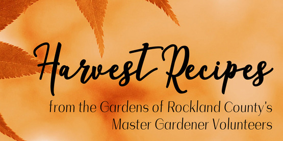 Harvest Recipes from the gardens of Rockland County's master gardener volunteers