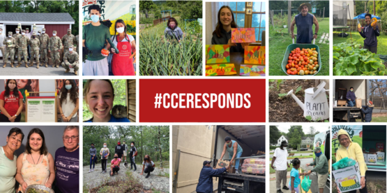 #CCEResponds Campaign Cover