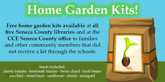Home Garden Kits Spring