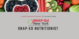 SNAP-Ed Nutritionist
