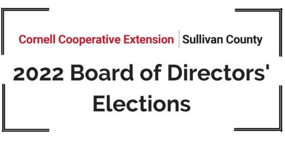2022 Board of Directors Elections