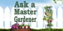 Ask A Master Gardener!