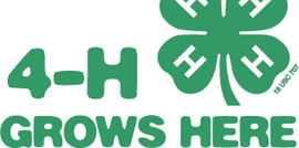 4h grows logo rgb