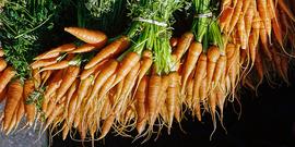 Carrots usda