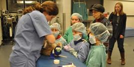 Cornell vet school open house