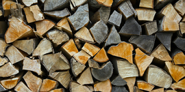 """Firewood Stacked Up to Dry Showing Annual Rings"""