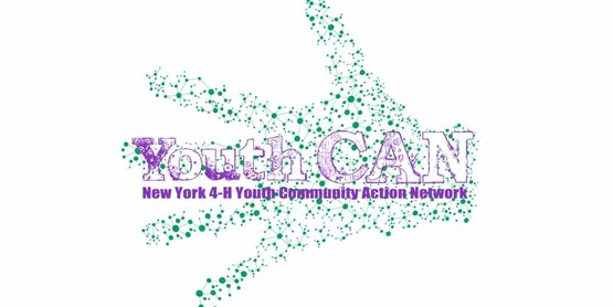 Albany youth can850x425.from sandra