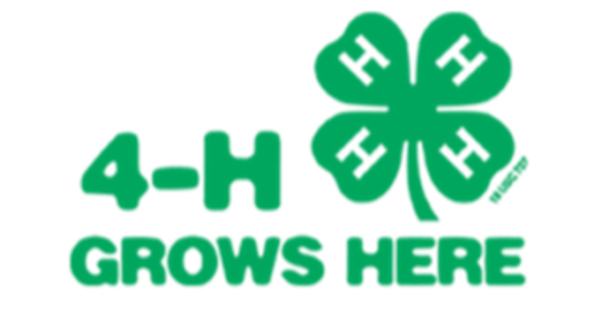 4 h grows here logo