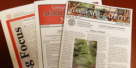 Publications created at CCE Livingston