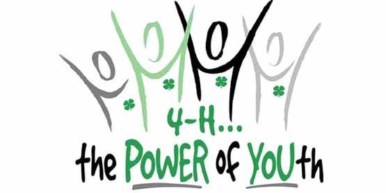4h power of youth logo800x400