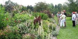 Community Beautification - Visitors tour Debi Lampman's garden during the Open Days Garden Tour 2012.