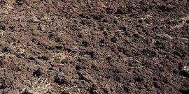 Soil850x425