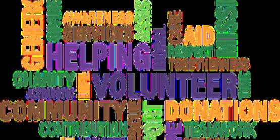 Volunteer 1326758  340