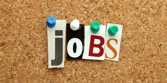 """the word """"jobs"""" spelled with push-pins and cut out letters on a cork bulletin board"""