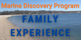 MDP banner family experience