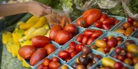 Vegetable varieties for 2020