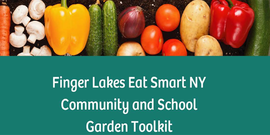 cover of the Finger Lakes Eat Smart NY School & Community Garden toolkit, showing a row of vegetables, dirt, and the title of the booklet