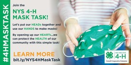 NYS 4-H Mask Task project with hand folding up a mask