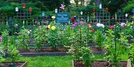 Sally Neumann profile garden pic