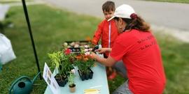 Doreen gardening