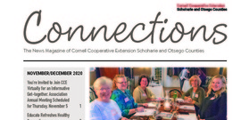 Read the November/December 2020 Issue of Connections!