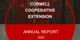Annual Report 2020 Cover Page