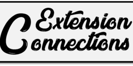 Extension Connections Newsletter