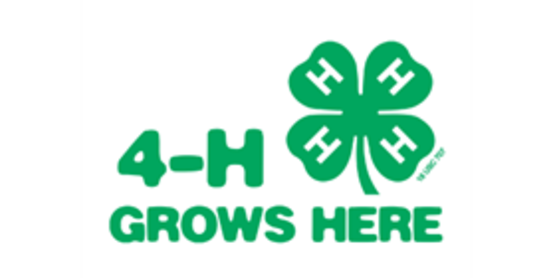 TASTE OF LEWIS COUNTY SUPPORT 4H and Local Producers ! Buy a basket of terrific local foods today!