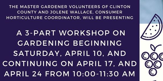 The Master Gardener Volunteers of Clinton County and Jolene Wallace, Consumer Horticulture Coordinator, will be presenting a 3-part workshop on gardening beginning Saturday, April 10, and continuing on April 17, and April 24 from 10:00-11:30 am.  Whether you are planning to start your first garden or have been gardening for years and want to hone your skills, learn the latest research, or spend some time with like-minded gardeners, plan to join us.  This is a free series meant to inspire, encourage, and help you have a successful garden.  Contact Jolene Wallace at jmw442@cornell.edu for more information or to register and receive the ZOOM links.