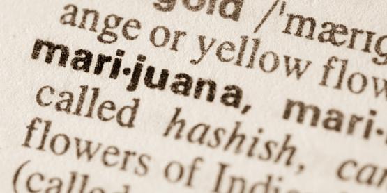 marijuana definition image