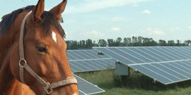 Solar Energy on Small Farms, May 27, 2021, Sponsored by Cornell Cooperative Extension of Westchester and Westchester's Agriculture & Farmland Protection Board
