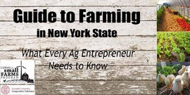 banner image for Guide to Farming in New York