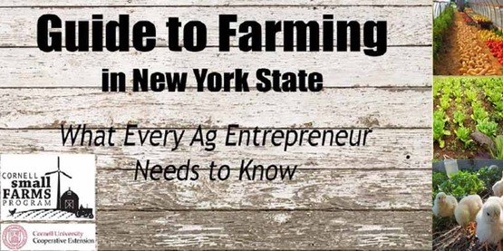 Guide farming ny banner850x425