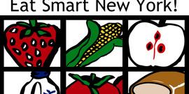 2013 esny logo