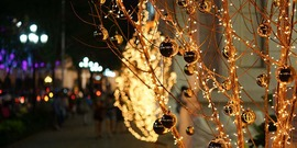 Christmas trees in LED lights, Ho Chi Minh City; holiday lights